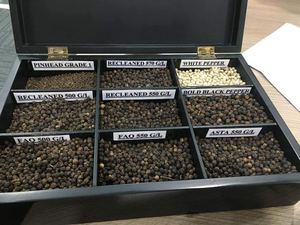 USA - THE LARGEST MARKET OF VIETNAMESE BLACK PEPPER FOR THE