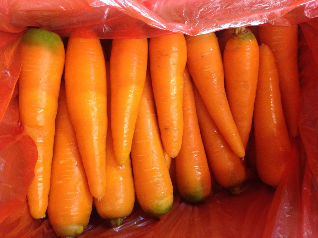 Price Fresh Carrot in Vietnam new crop, fresh carrot size M weigt 100-200gm/ piece