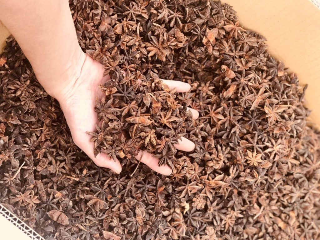 Star Anise from Vietnam at the best price, assure quality. Star anise whole, 8% broken max star anise.