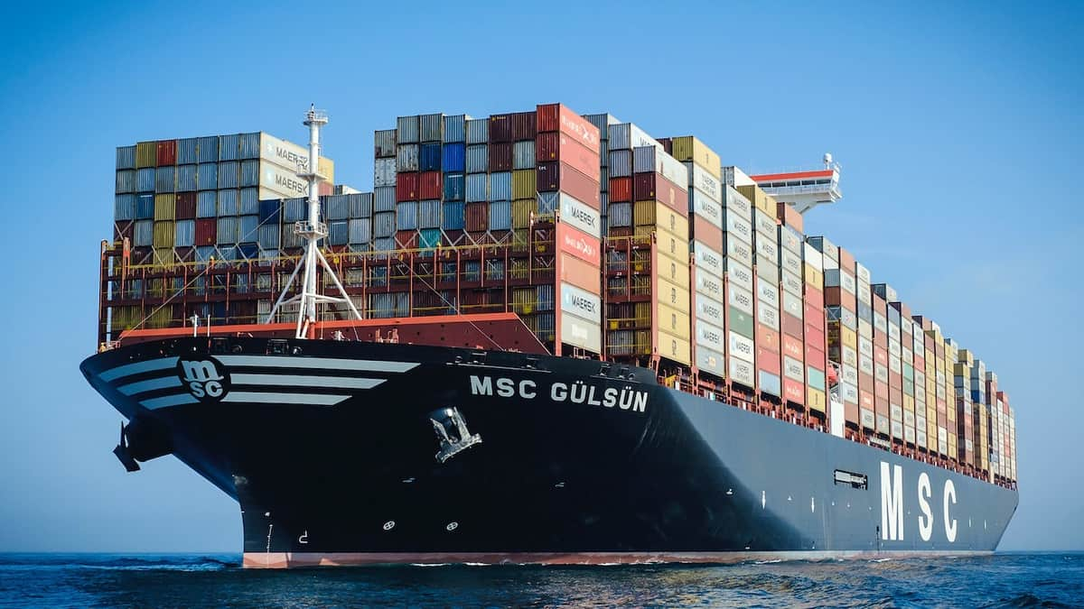 Stucking vessels, empty containers, high freight cost, freight cost from Vietnam to America, EU countries