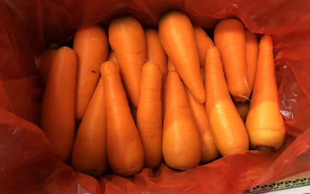 KOREA BANNED IMPORTING CARROT FROM VIETNAM